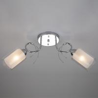 30122/2 / потолочный светильник хром