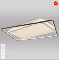 Потолочный светодиодный светильник с пультом управления 90157/2 белый